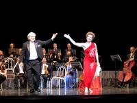 музыкальный коллектив «Венский Штраус оркестр»