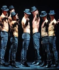 танцевальное шоу «Los Vivancos»