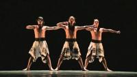 танцевальное шоу «The MALAMBO»