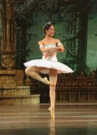 Вечер балетов 20-го века